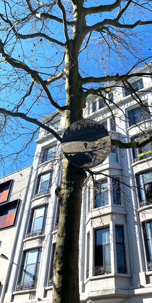 Wido Blokland Eye for a tree